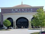 Amini's Galleria - Clip